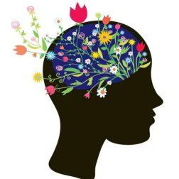 cropped-tn_brainflowers_b.jpg